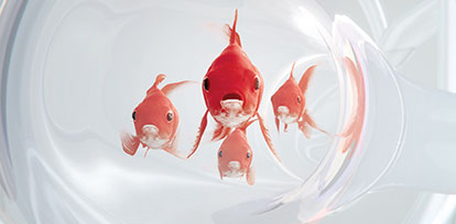Watch the PRADAXA Red Fish TV Commercial